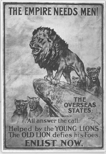 """Young Lions"" Postcard, ca. 1914"